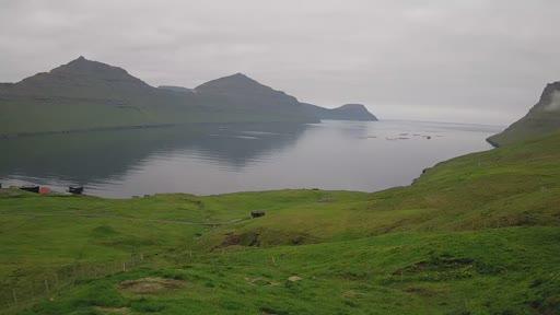 Le verdi distese delle Faroe